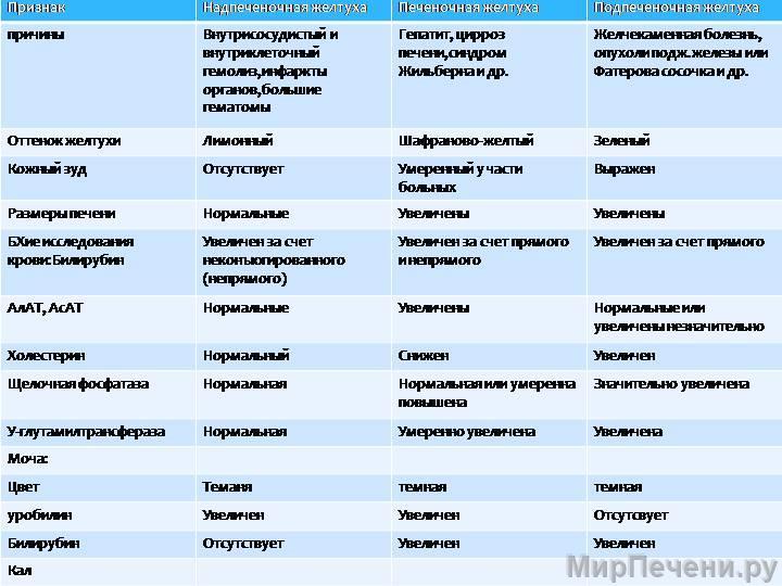 Синдром Жильбера-Мейленграхта