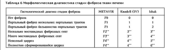 белье термобелье значения фиброскана по шкале метавир того, что заказать