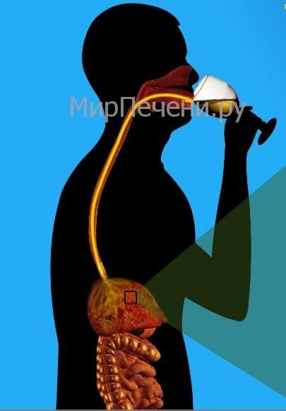 Болезнь токсический гепатит