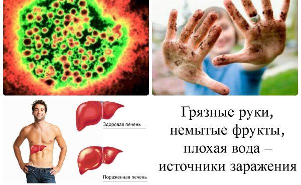 Причины развития болезни Боткина